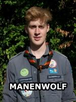 afbeelding van manenwolf
